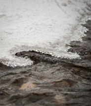Thin ice along the river's edge