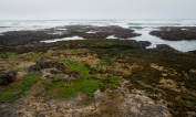 Lots of tidepools to explore