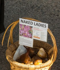 First time I've seen naked ladies for sale in Twisp