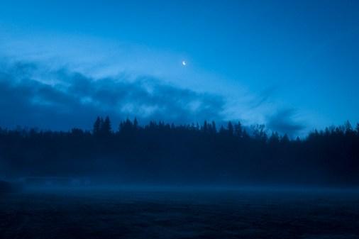 Monday morning fog