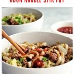 udon noodle stir fry recipe - pinterest