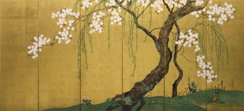 Ogata Kôrin , cerisier