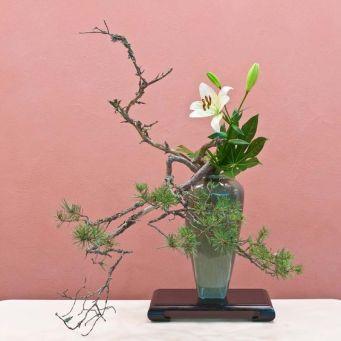 ikebana nageire, ecole Ohara