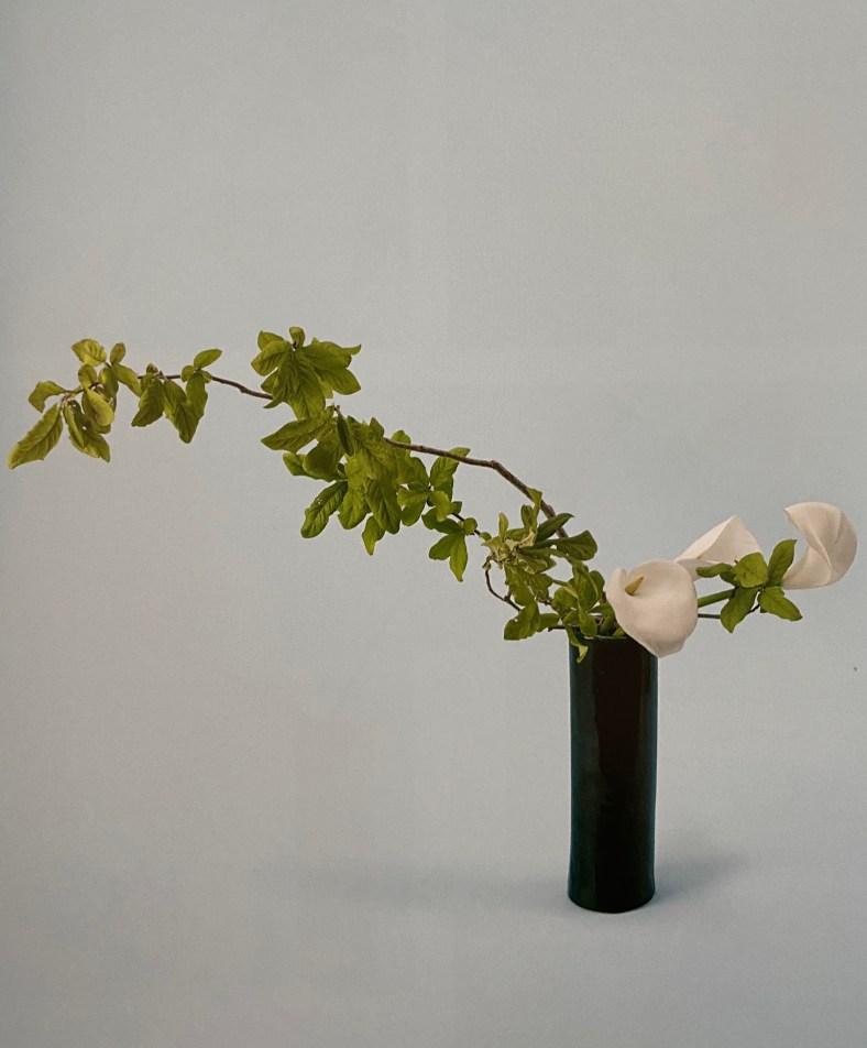 ikebana, style nageire