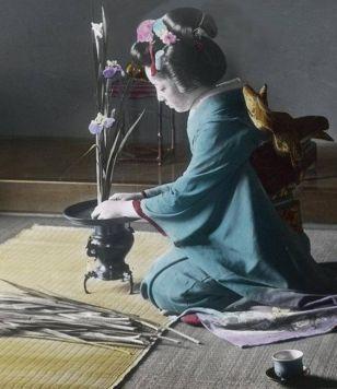 photographie, ikebana