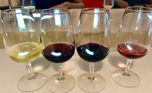 Port Wine Tasting Porto Portugal