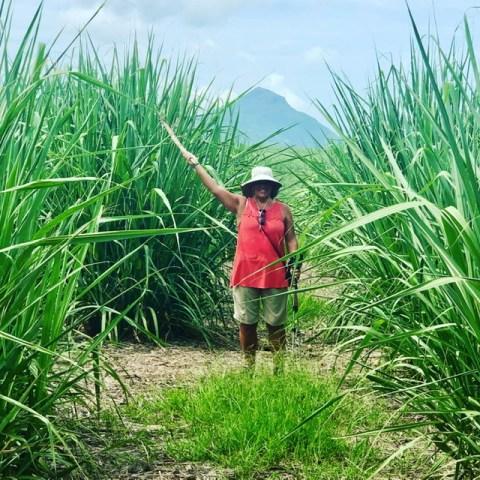 Hiking on Mauritius