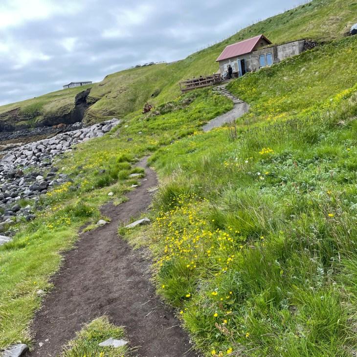 Fjoruhusid Iceland