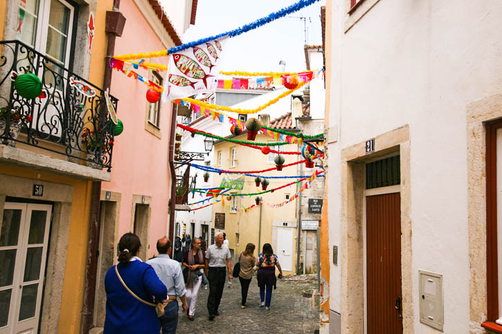 The lanes in the historic districts of Lisbon are decorated with buntings having the symbols of sardines and basil plants.