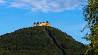 Neuffen Castle from Neuffen Town