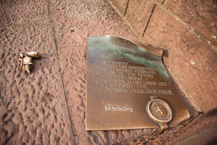 """Next to the monkey there is a bronze badge with the inscription of the mocking poem of Zeiller (in German): """"Was thustu mich hie angaffen?/ Hastu nicht gesehen den alten Affen zu Heydelberg / sich dich hin und her/ Da findest du wol meines gleichen mehr."""""""