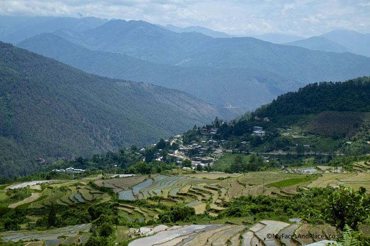 Terraced rice fields grace the mountain side like waves of green ripples - Bhutan the Beautiful
