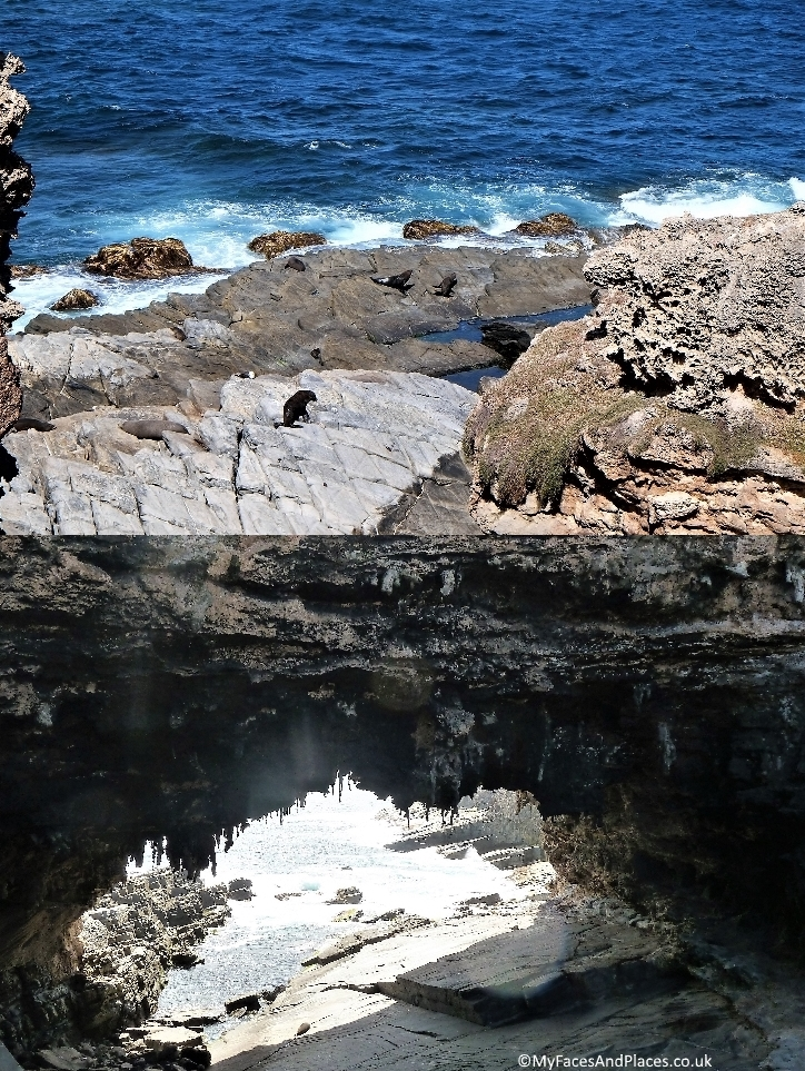 New Zealand fur seals make their home on the rocks at Admiral Arch
