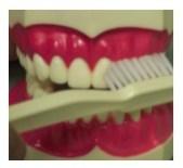 toothbrush in Fairfax