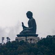 Buddist and Zen Therapies
