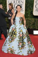 I have to say I am unimpressed by Lucy Liu's table cloth of a dress.