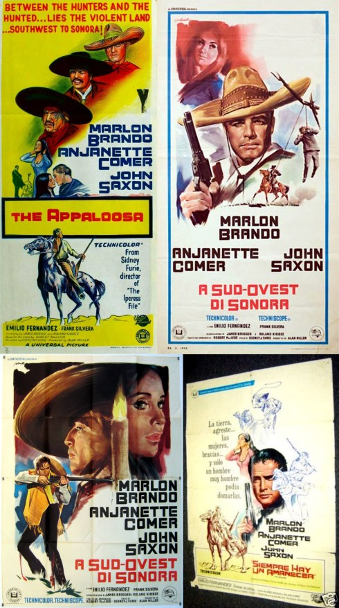 The Appaloosa Posters 2