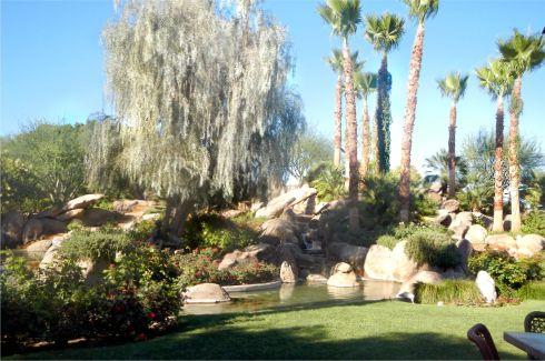 jackalope garden
