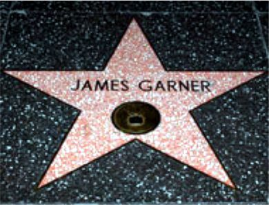 Garner Star