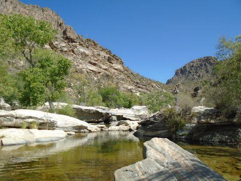 Sabino Canyon oasis
