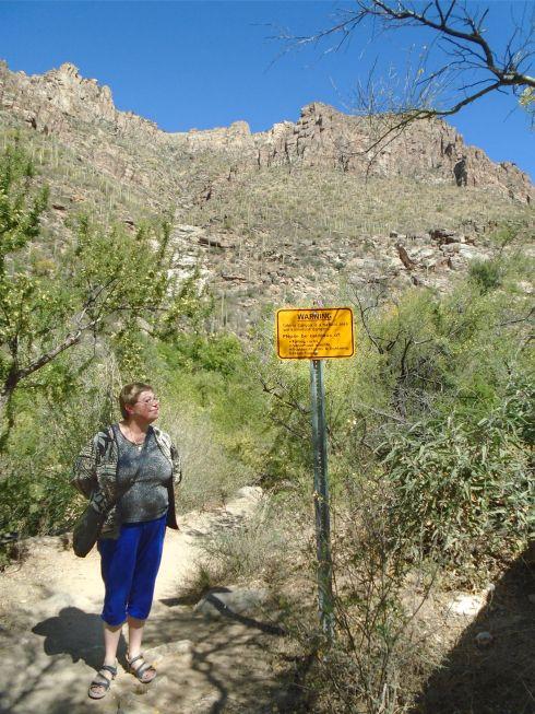 Sabino Canyon sign