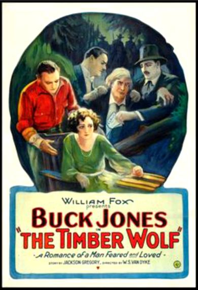 The Timber Wolf (1925)
