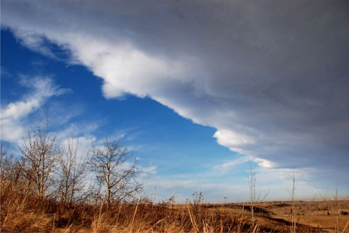 chinook arch 2