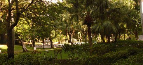 Punta Cana 8