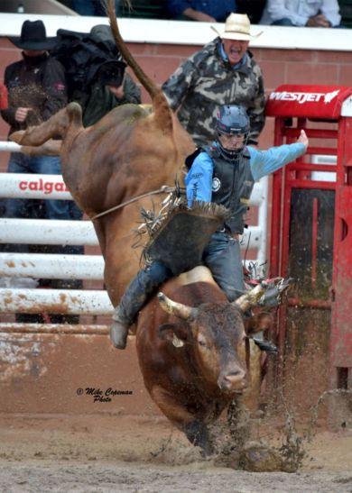 Calgary Stampede 2016 image 7