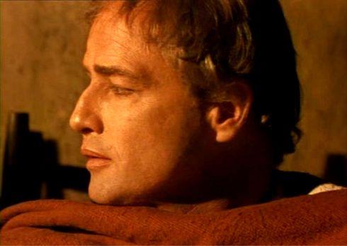The Appaloosa - Brando 3