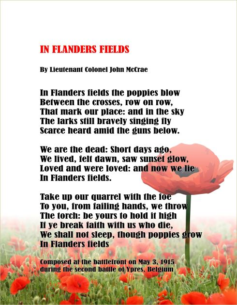in-flanders-fields