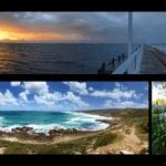 Margaret River - Western Australia Road Trip