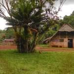 Vunasep Village Espiritu Santo Millenium Cave Vanuatu copy