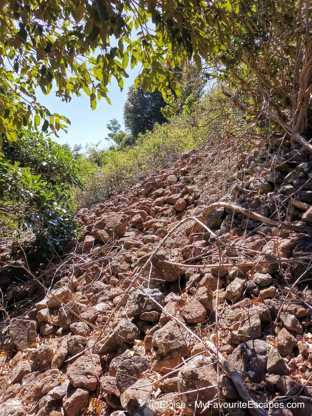 Scrambling Mount Blaine Summit Track