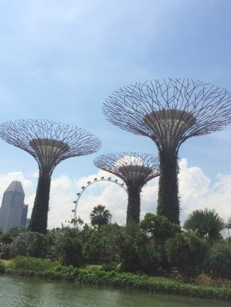 Singapore and Iphone 914