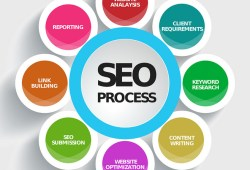 Basic Step SEO for Your Site