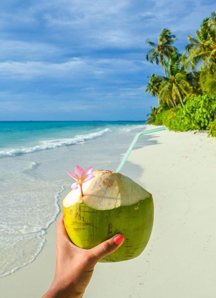 Drinking Coconut By The Beach Cruise to Mexico On a Budget - My Financial Hill