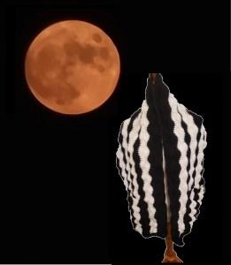 Full Moon Pocket Shawl