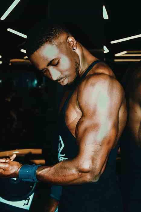 muscle gain - myfitfreak