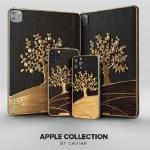 蘋果 iPad Pro 和 iPhone 12 Pro 限量珍藏版