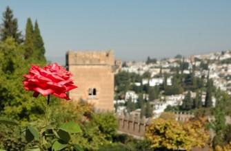 Гранада, дворец Альгамбра