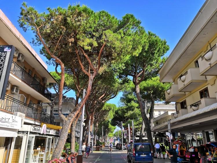Viale Dante - Back in Riccione