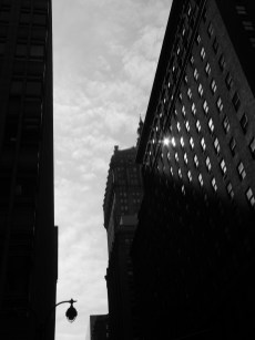 NYC Morning | Buy Now