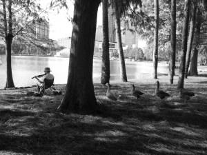 Lake Eola Park Orlando