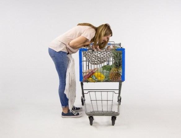 Shopping cart safety