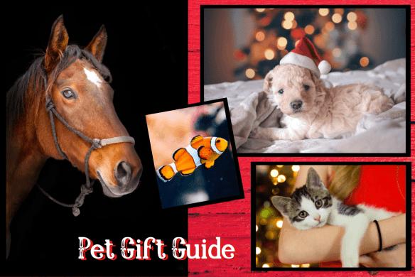 pet gift