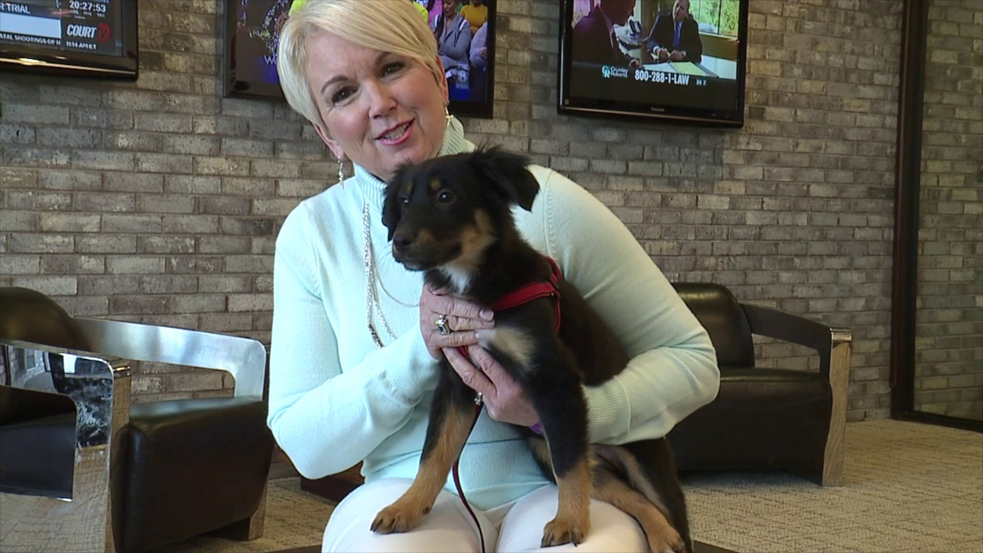 Eliza Jane is our Pet of the Week!