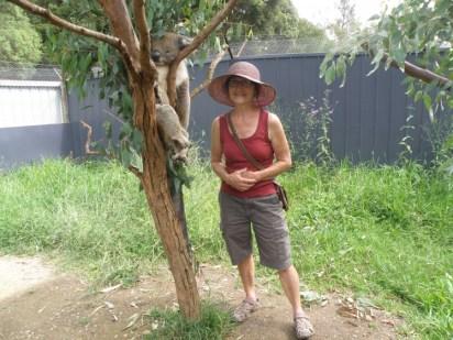 Me and the koala