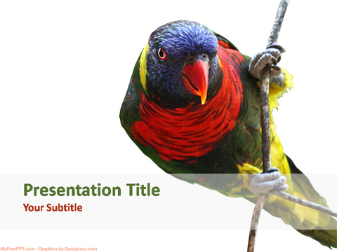 Free Parrot Powerpoint Template Download Free Powerpoint Ppt