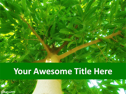 Free Green Tree PowerPoint Template Download Free PowerPoint PPT